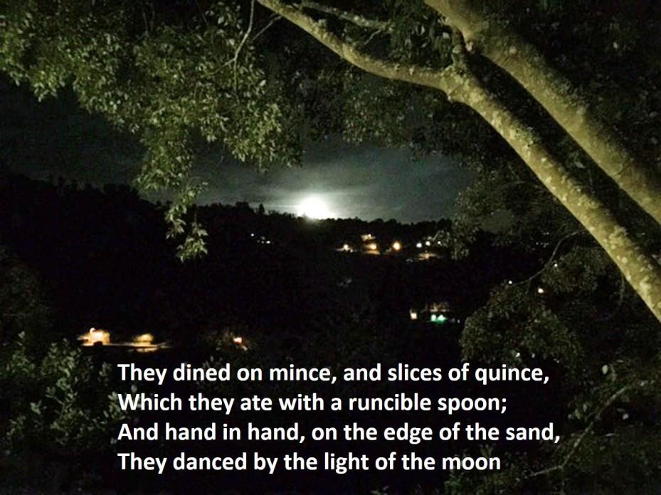 light-of-the-moon